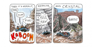 Rapids cartoon